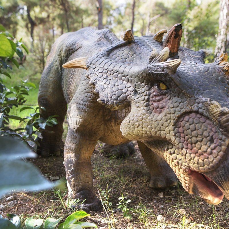 Explore Dinopark Antalya, Turkey this summer at affordable prices.